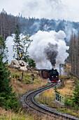 Brockenbahn, Harz Narrow Gauge Railways, Schierke, Harz, Saxony-Anhalt, Germany