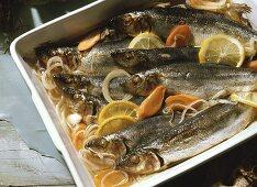 Oven-baked herrings