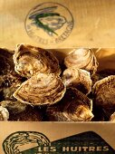 Oysters in a Wooden Box