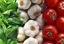 Basil, garlic and tomatoes (Italian colours)