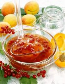Redcurrant and apricot jam