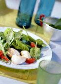 Scallops on mixed salad leaves with spinach and rocket