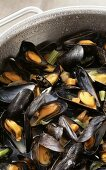 Mussels in vegetable and wine stock