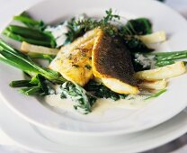 Pike-perch on spinach and spring onions
