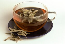 Sage tea and dried leaves (Salvia officinalis)