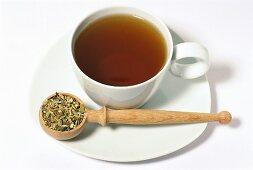 Chicory tea (Cichorium intybus)