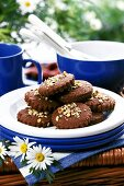 Chocolate biscuits and crockery for picnic or summer party