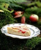 A piece of apple cake