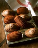 Madeleines with honey and cocoa