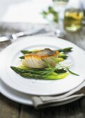 Zander fillet with green asparagus and champagne sauce