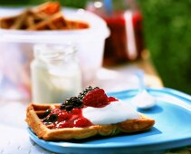 Yoghurt waffle with berries and quark on plastic plate