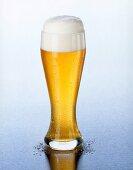 Weissbier (wheat beer) with head of foam in Weissbier glass