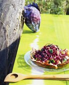 Red cabbage and bacon salad on table in open air