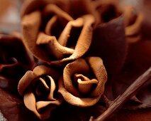 Velvety chocolate roses (close-up)