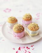 Mini-rolls with chopped pistachios