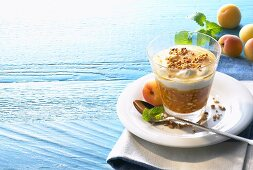 Apricot cream with nuts (Greece)