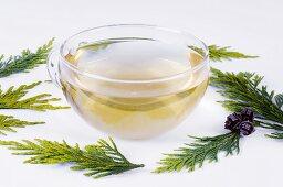 Thuja foliage and cup of tea