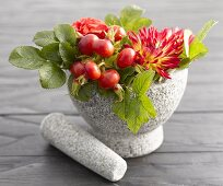 Rose hips and autumn flowers in stone mortar