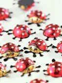 Ladybirds (sign of good luck)