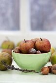 Apples and nuts on a windowsill