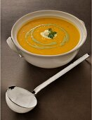 Carrot soup with lemon grass and corriander pesto