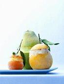 Citrus fruit granita with Tequila