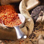 Red lentils in jute sack with scoop