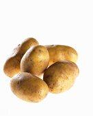 Five potatoes, variety 'Ditta'