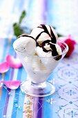 Ice cream with chocolate sauce