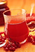 Hot drink with guelder rose berries