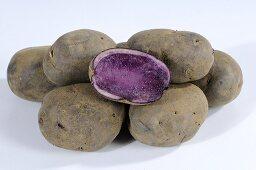 Mehrere Kartoffeln (Sorte: Blauer Schwede), ganz und halbiert