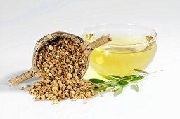 Cup of chickweed root tea (Stellaria root, Yin Chai Hu, China)