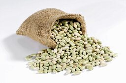 Flageolet beans spilling out of hessian sack