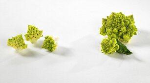 Florets of Romanesco cauliflower