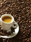 Cup of espresso on coffee beans