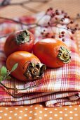 Japanese persimmons and rosehips on a checked cloth