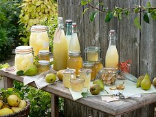 Bottled pears, pear juice, pear jelly, dried and fresh pears