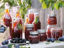 Prunes, plum puree, plum juice and bottled plums