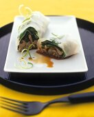 Beef spring roll