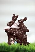 Two chocolate Easter Bunnies in green grass