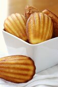 Lemon madeleines in a dish