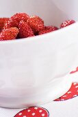 A bowl of alpine strawberries