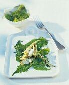 Brennnesselsalat mit Fenchel und Frischkäse