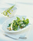 Gänseblümchenblätter-Salat mit Walnüssen und Ziegenkäse