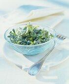 Wiesen-Labkraut-Salat in einem Glasschälchen