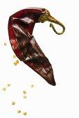 A dried chilli pepper (chile de arbol, tree chilli pepper)