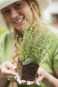 A woman holding a thyme plant