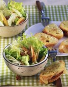 Green oak leaf lettuce with pears, fennel and walnuts