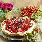 Redcurrant yoghurt tart