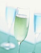 Blue Champagne: cocktail made with champagne & Blue Curaçao